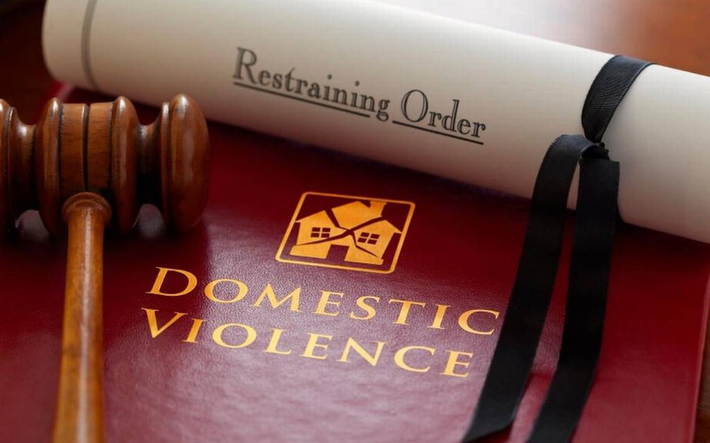 DOMESTIC VIOLENCE CASE LAWYER